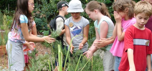 Gardening therapy for special needs