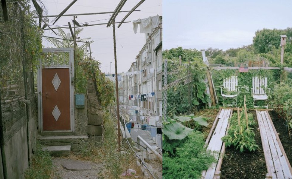 Urban gardens of the world in pictures
