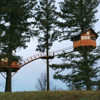 Houses in trees archives houz buzz - Treehouses the absolute freedom ...