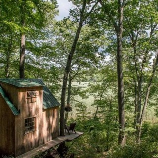 The 4,000 USD house in the woods