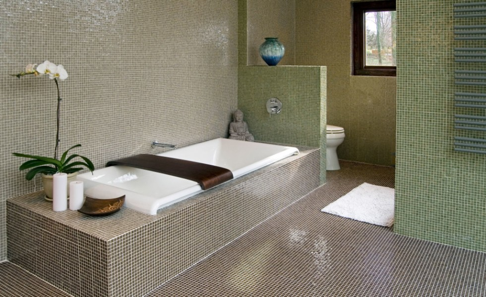 Best plants for bathrooms at home