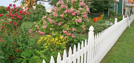 Garden fencing ideas at home