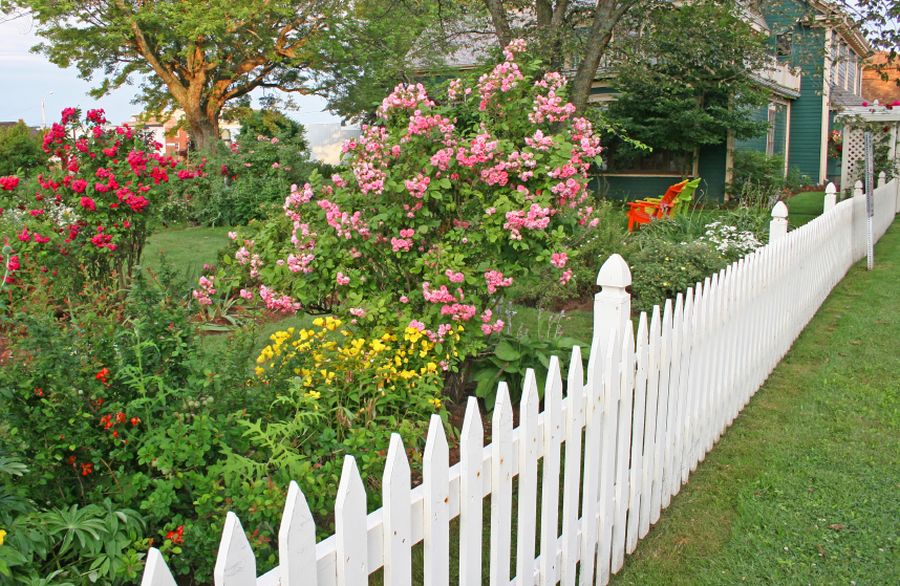 beautiful garden fencing ideas