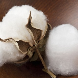 What to do with cotton balls at home