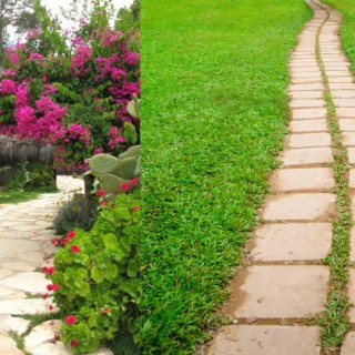 Slab pathway design ideas for all