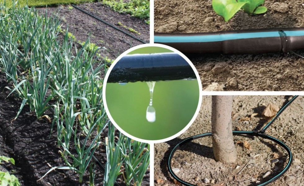 Diy drip irrigation systems saving water houz buzz for Home garden irrigation design