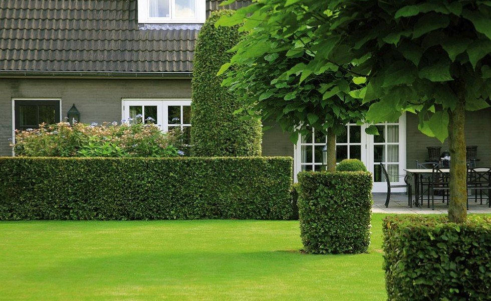 Green fencing ideas aesthetics and functionality houz buzz - Green fencing ideas ...