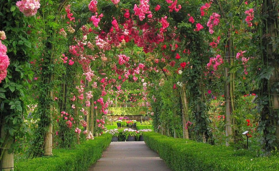 Garden Design Arches 15 splendid garden arches design ideas - houz buzz