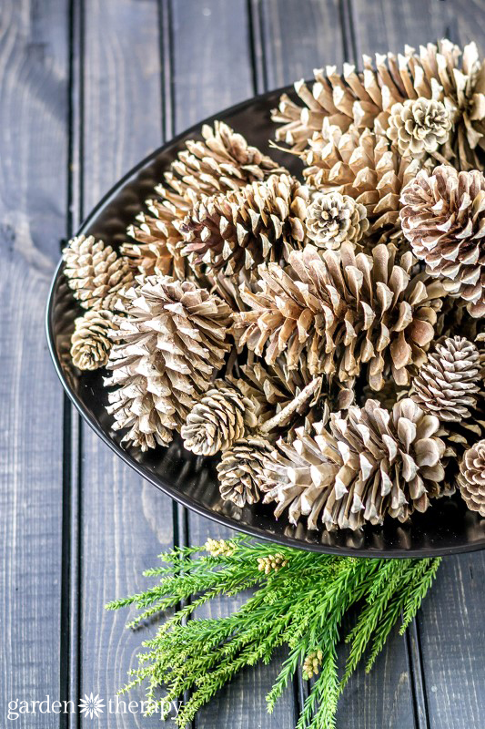 crafty winter decorations with pine cones bleach