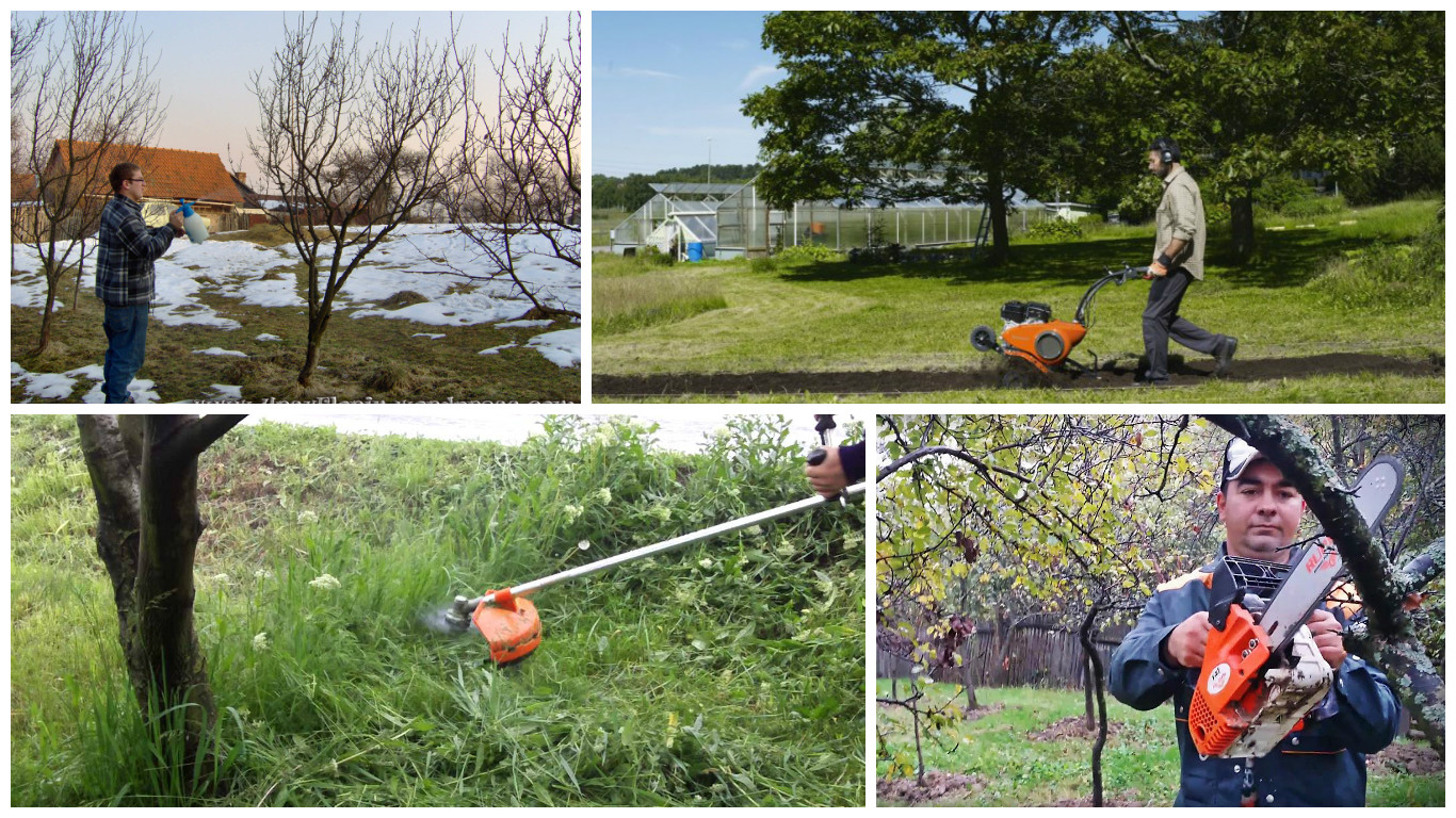 5 must have tools for a small garden or orchard houz buzz - Must tools small garden orchard ...