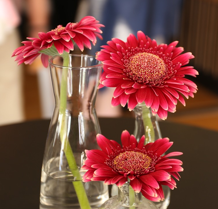 Wedding Flowers How To Keep Fresh : How to keep flowers fresh longer tips for different varieties