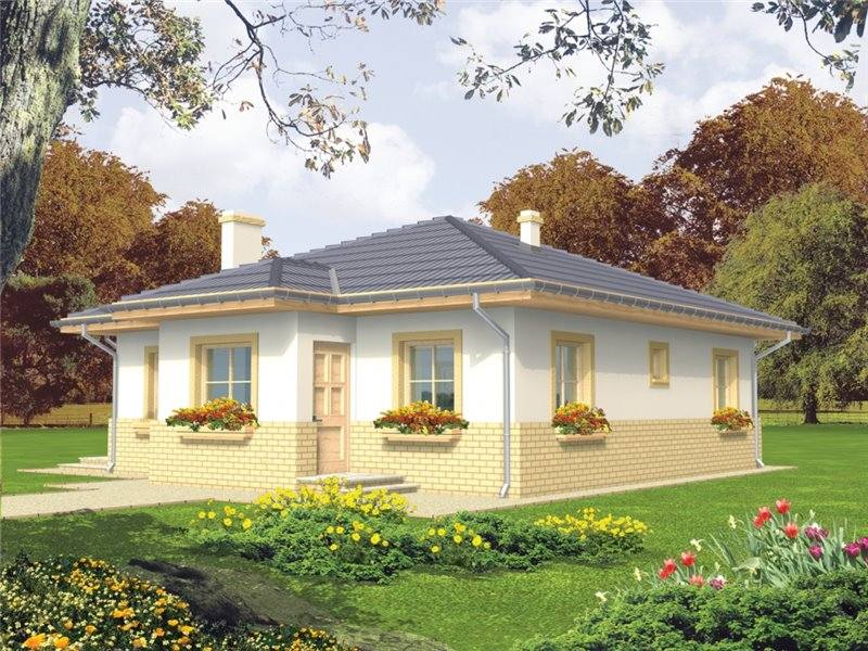 one story two bedroom house plans economically and