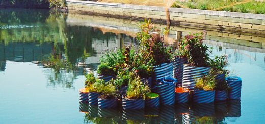 innovative water decontamination project