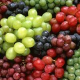 Romanian table grape cultivars