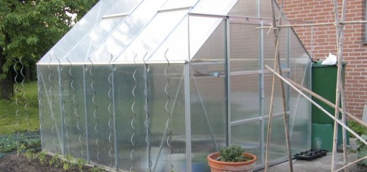 How to build a greenhouse for vegetables in a few steps