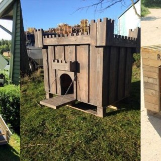 How to build a dog house with pallets at home