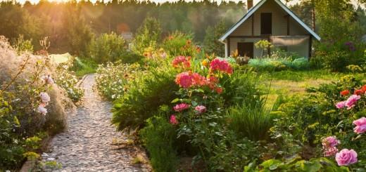 Dream garden design ideas at home