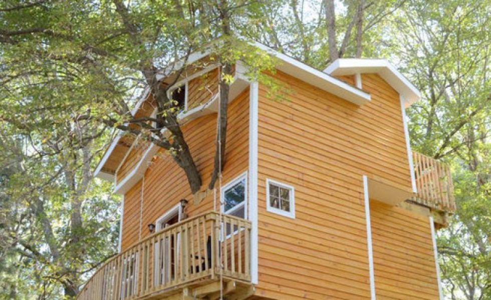 The ultimate treehouse in America