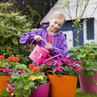 Child safe indoor plants at home