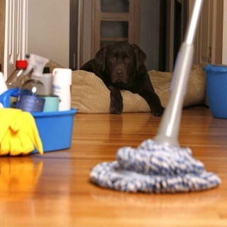 Easy cleaning tips for home