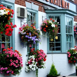 English style window boxes are splendid