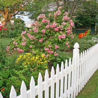 Garden fencing ideas at home