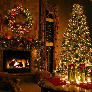 Tips to care for a natural Christmas tree at home
