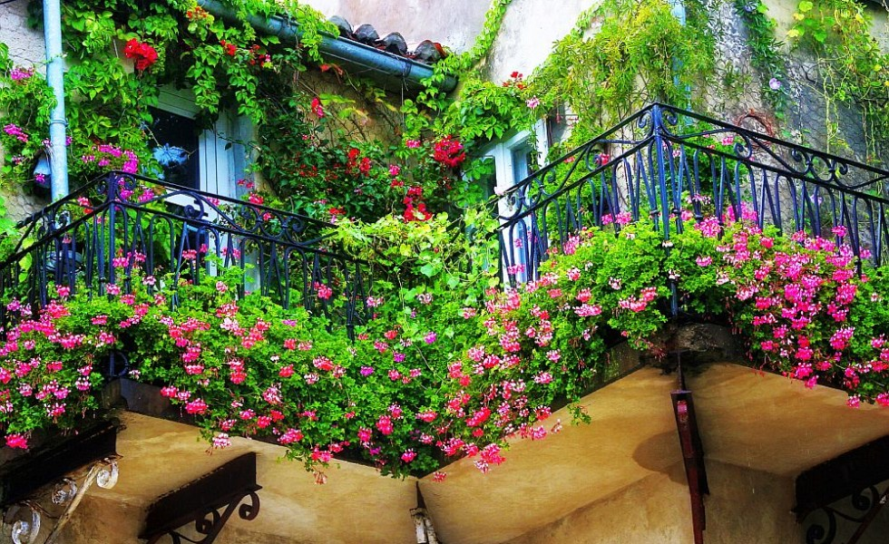 Small Balcony Garden Ideas And Tips - Houz Buzz
