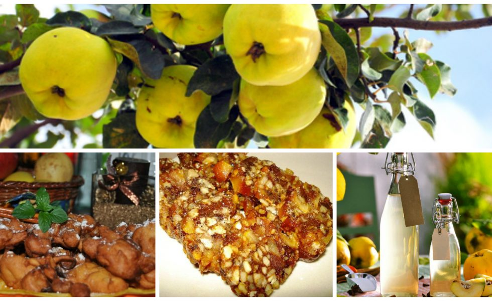 5 delicious quince recipes
