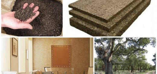 cork insulation for the home