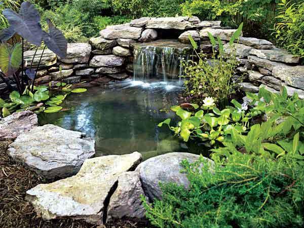how to build a pond