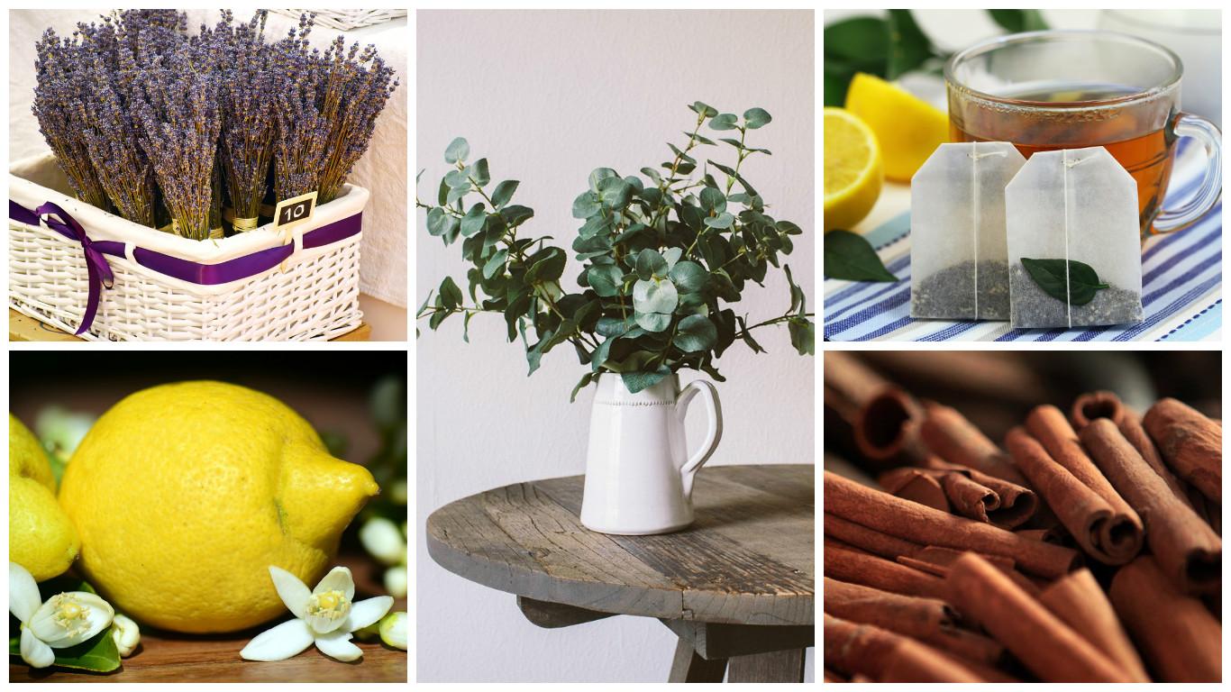 natural home fragrances