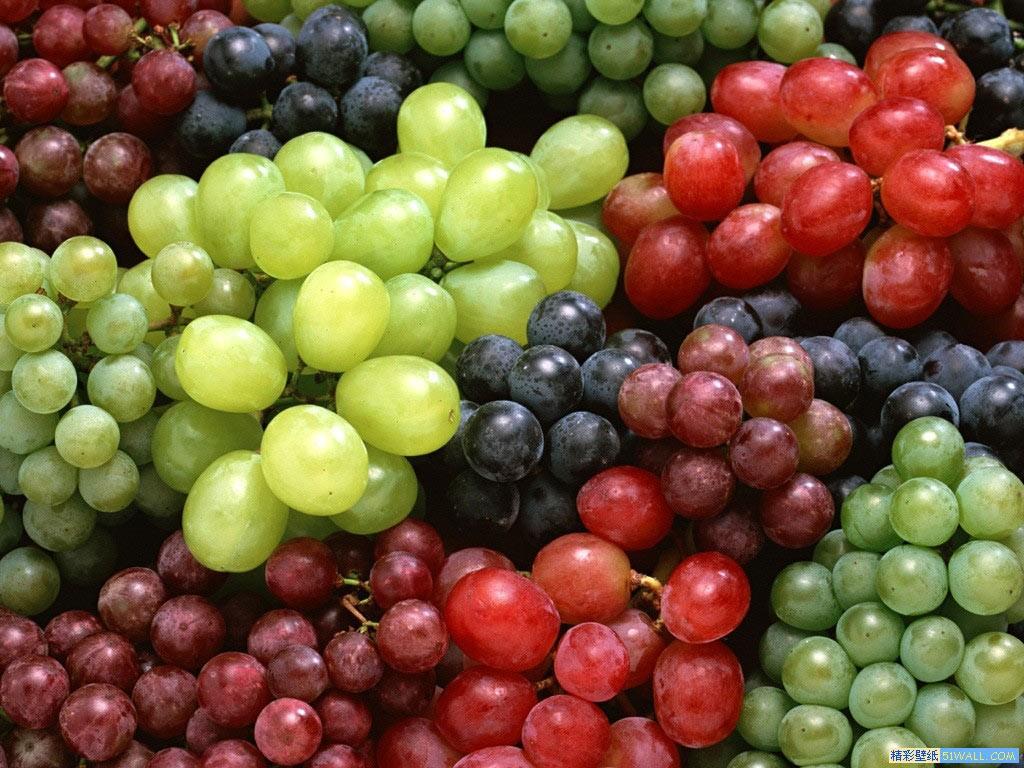 Romanian table grape cultivars
